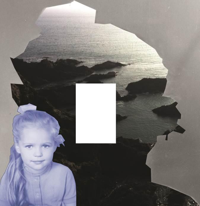 FBI. void 2017 , Fotomontage, 30 x 30 cm